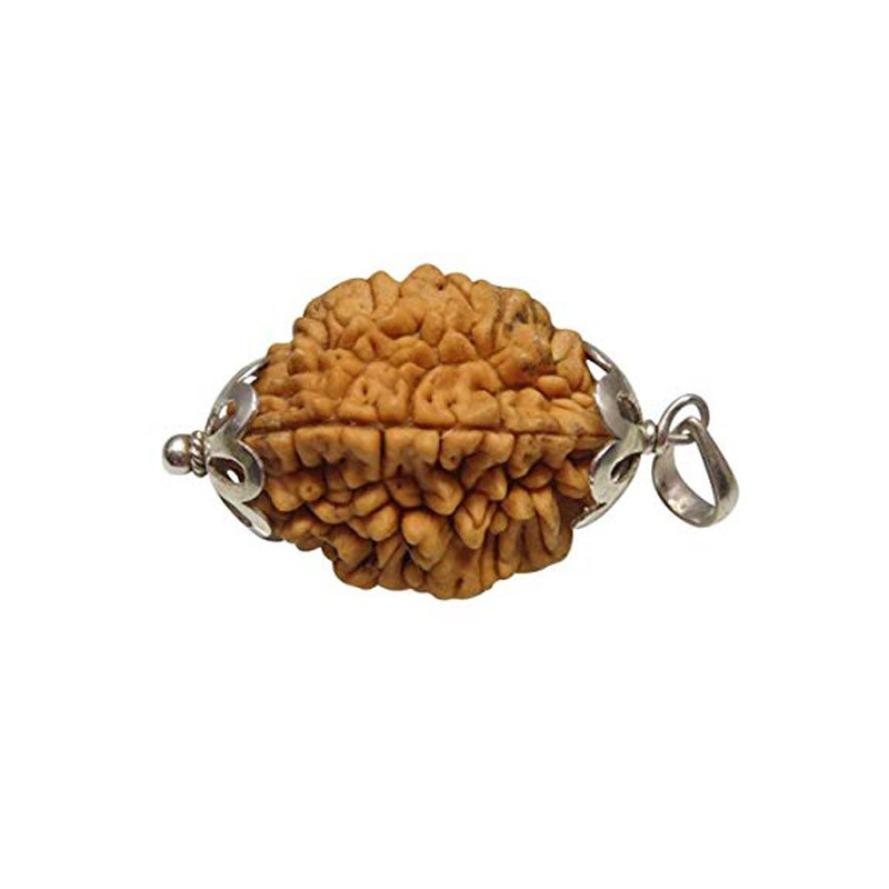Natural 2 Mukhi Rudraksha Lab Certified Pendant in Silver