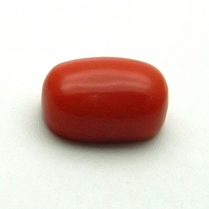 10.26 Carat/ 11.39 Ratti Natural Italian Coral (Moonga) Gemstone