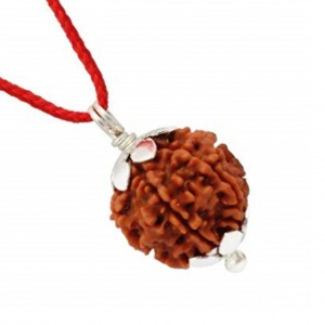 Natural 4 Mukhi Rudraksha Lab Certified Pendant in Silver