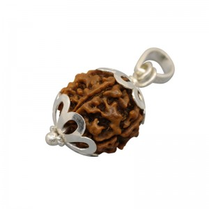Natural 6 Mukhi Rudraksha Lab Certified Pendant in Silver