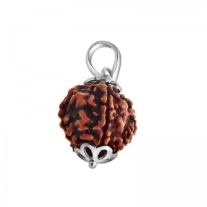 Natural 5 Mukhi Rudraksha Lab Certified Pendant in Silver
