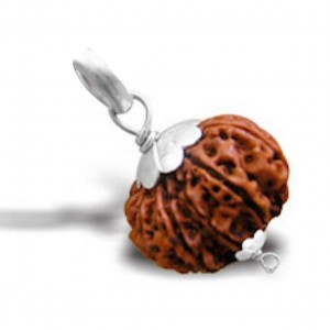 Natural 8 Mukhi Rudraksha Lab Certified Pendant in Silver