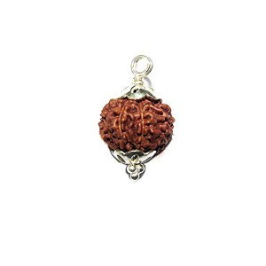 Natural 9 Mukhi Rudraksha Lab Certified Pendant in Silver