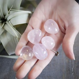 Natural Rose Quartz Tumbled Healing Crystals